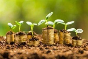 Grow Cash